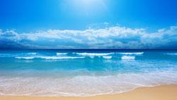 beach bkgd